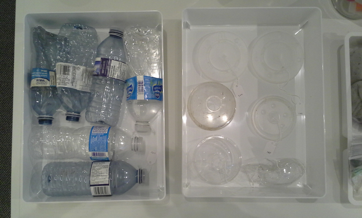 Unnatural History Collection, plastic water bottles + cup lids