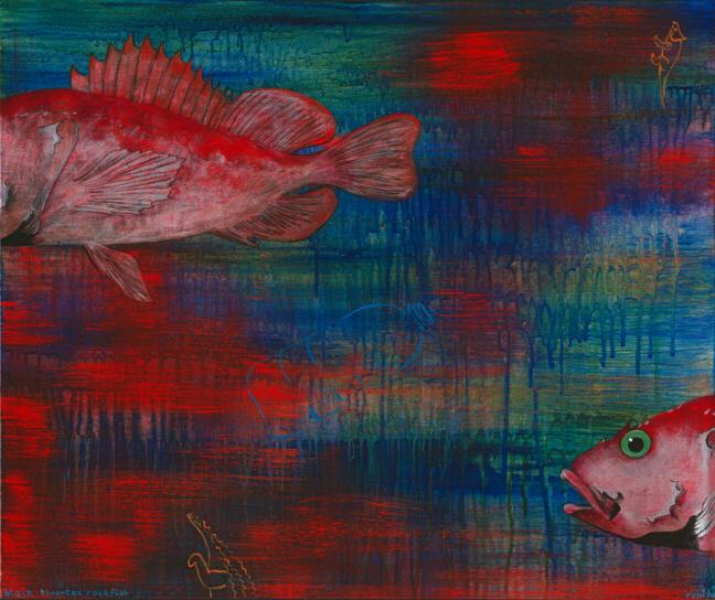 Black-throated Rockfish