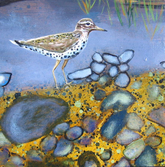 Up the Creek - detail (sandpiper)