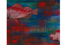 black_throated_rockfish.jpg