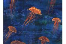 jellyfish.jpg