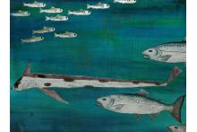 salmon_migration.jpg