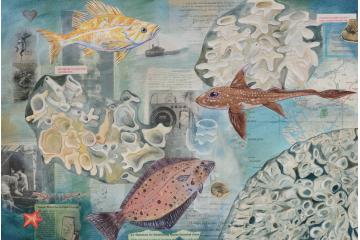 Glass Sea Sponge Reef