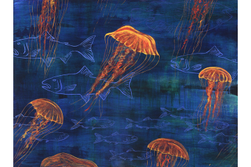 Jellies and Fish