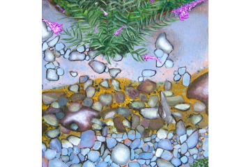 Up the Creek - detail (dipper)